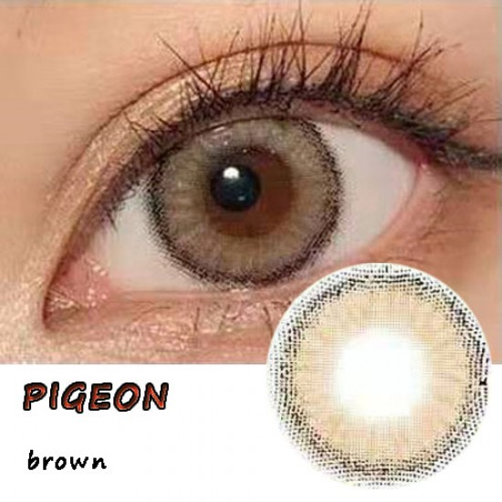 PIGEON BROWN COLOR CONTACT LENS (2PCS/PAIR)